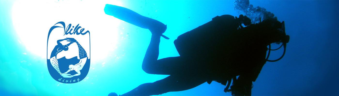 Alike Diving
